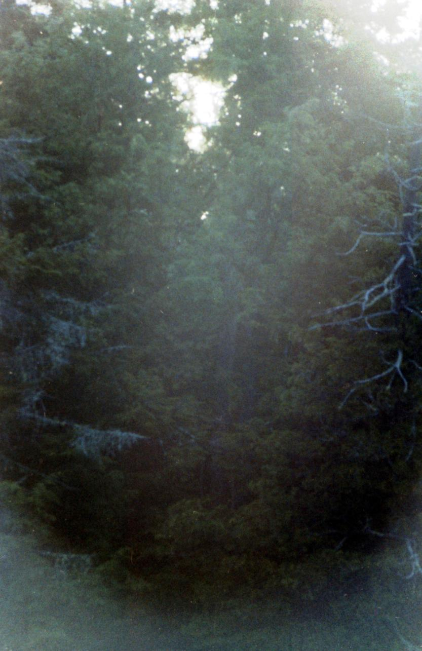 Brume matinal Nominigue 1977